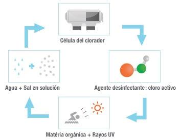 cloracion_salina